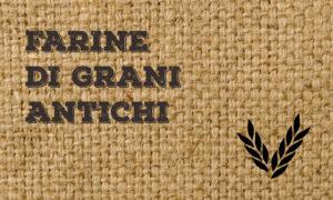 farine di grani antichi